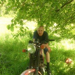 серега, 28 лет, Медногорск