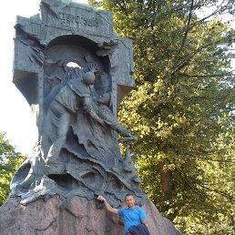 александр, 45 лет, Батецкий