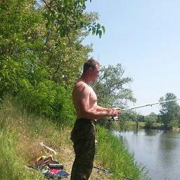 Андрей, 29 лет, Выселки