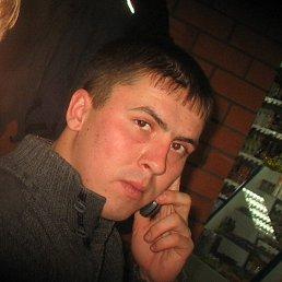 Алексей, 29 лет, Поспелиха