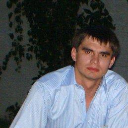 Yarik, 34 года, Тетиев