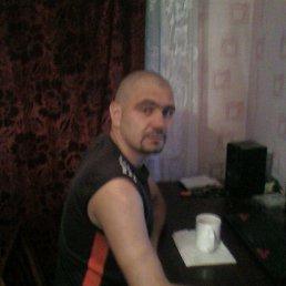 Яшка, 34 года, Макеевка