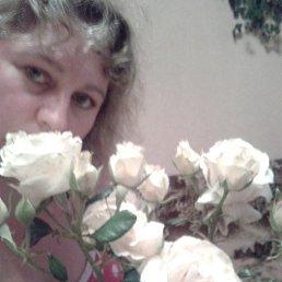 Ирина, 42 года, Западная Двина