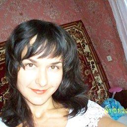 Ольга, 41 год, Константиновка