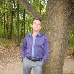 Виталий, 35 лет, Золочев