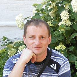 михаил, 37 лет, Косов