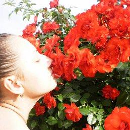Светлана, 33 года, Ружин