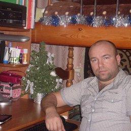 Алексей, 40 лет, Орел
