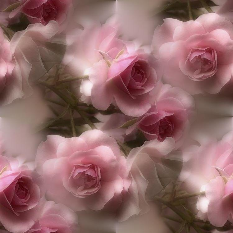 картинки в розово серых тонах всем известно