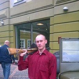Серёга, 29 лет, Лодейное Поле