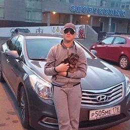 Лев, 29 лет, Сестрорецк
