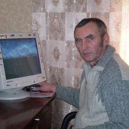 Владимир, 61 год, Кременец