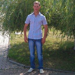 Серёга, 30 лет, Курск