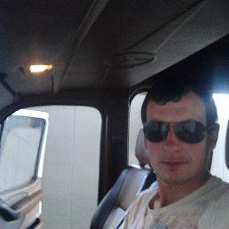 Олександр, 27 лет, Кельменцы