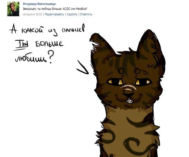 Картинки с надписями коты воители