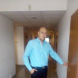 Сергей, 31 год, Боярка