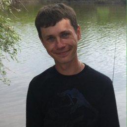 Дмитрий, 35 лет, Курган