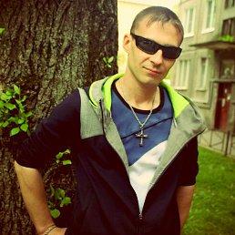 денис, 36 лет, Волосово