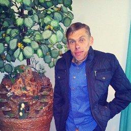 Ярослав, 29 лет, Коломыя