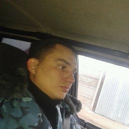Nikolaj, 36 лет, Вязьма