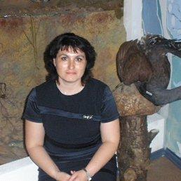 Надежда, 41 год, Балезино