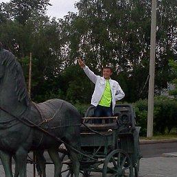 фанис, 30 лет, Сургут