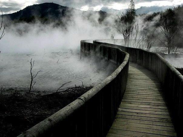 Самое непростое в жизни — понять, какой мост следует перейти, а какой сжечь. @ Эрих Мария Ремарк