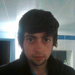 Саша, 28 лет, Могилев-Подольский