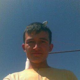 Muhammad, 27 лет, Ульяновское