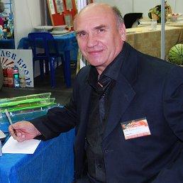 Александр, 61 год, Гай