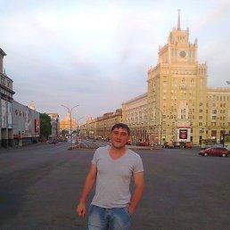 Егор, 36 лет, Курск