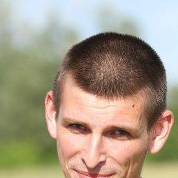 Сергей, 28 лет, Ромны