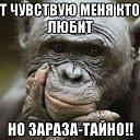 Фото Виктор, Симферополь, 50 лет - добавлено 21 октября 2015