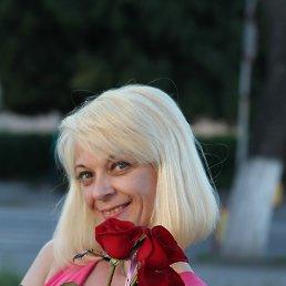 Елена, 40 лет, Новоград-Волынский