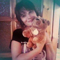 Елена, 46 лет, Пологи