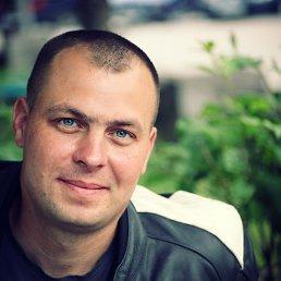 Александр, 40 лет, Томское
