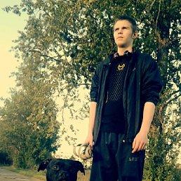 Николай, 24 года, Гатчина
