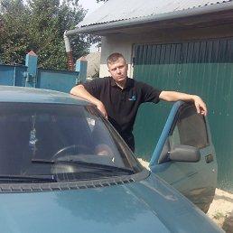 Николай, 26 лет, Тростянец