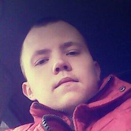 Артём, 29 лет, Тюмень