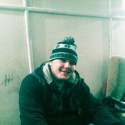 Николай, 28 лет, Новосиль