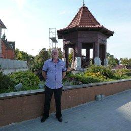 Алексей, 60 лет, Жмеринка