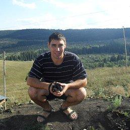 Дамир, 36 лет, Омск