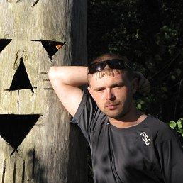 Владимир, 29 лет, Луга