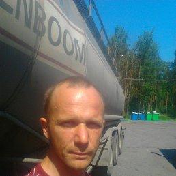 Александр, 41 год, Шимск