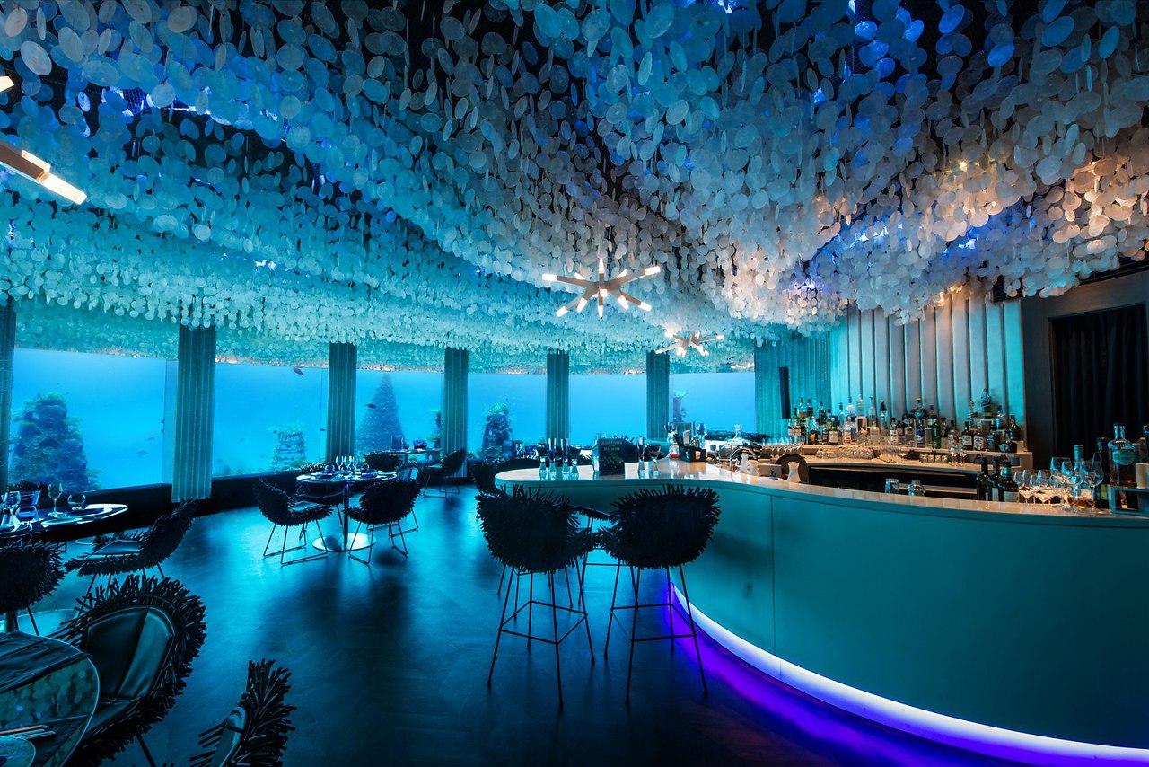 защиту перевозимых подводный ресторан в москве фото них