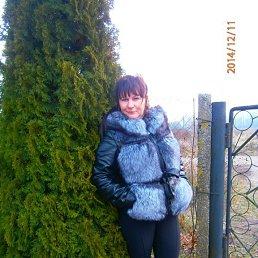 Лидия, 46 лет, Калининград