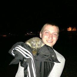 Lyps, 28 лет, Курчатов