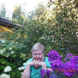 Лариса, 61 год, Луга