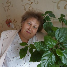 Альбина, 57 лет, Бежецк