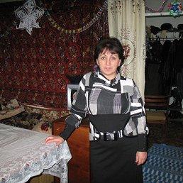 Лариса, 64 года, Бердичев